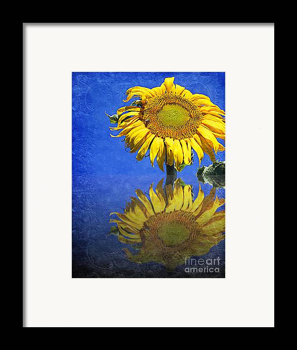 Sunflower Framed Print featuring the photograph Sunflower Reflection by Andee Design