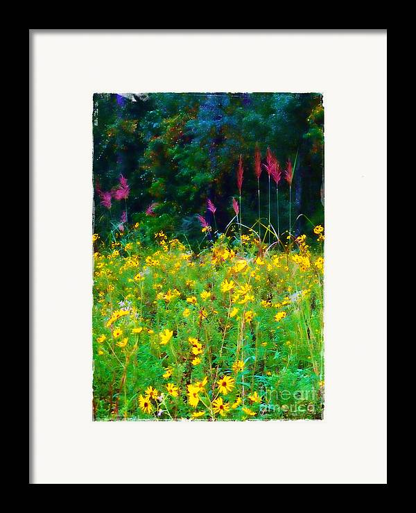 Sunflowers Framed Print featuring the photograph Sunflowers And Grasses by Judi Bagwell
