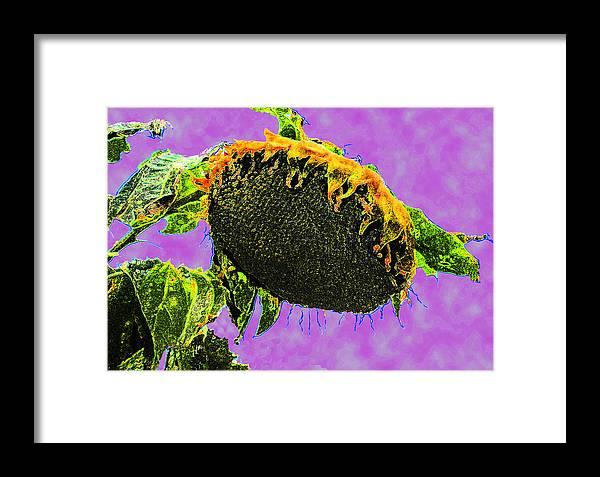 Abstract Sunflowers Framed Print featuring the digital art Sunflowers Birmingham Digital by Dianna Lawson