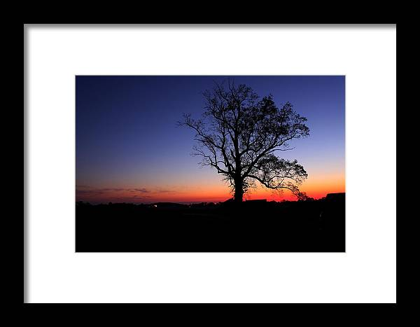 Tree Framed Print featuring the photograph Sunrise At Little Elk Creek Road by Ruthie Lombardi