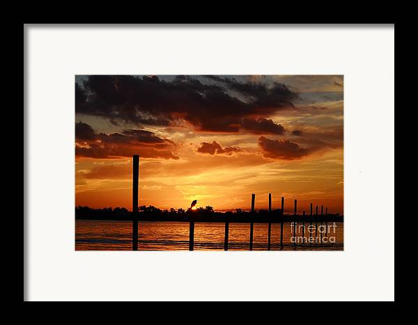 Sunset Framed Print featuring the photograph Sunset 1-1-12 by Lynda Dawson-Youngclaus