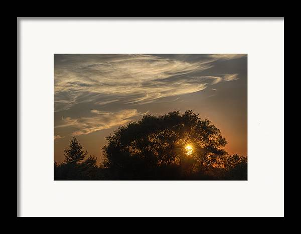 Joan Carroll Framed Print featuring the photograph Sunset At The Oasis by Joan Carroll