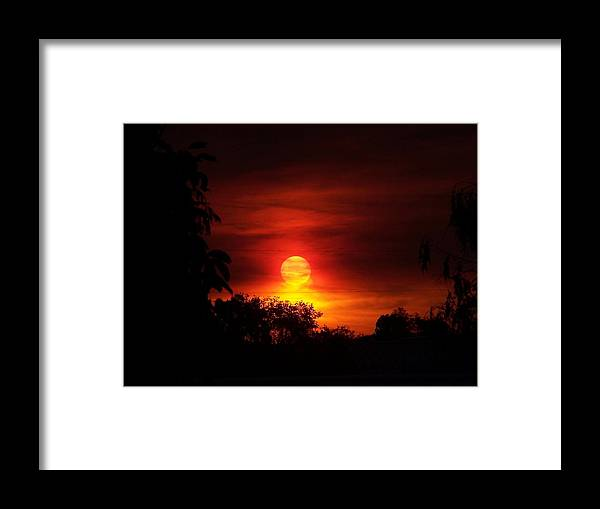 Picture Taken From Grandkids Fort During Fire Season Framed Print featuring the photograph Sunset by Richard Adams