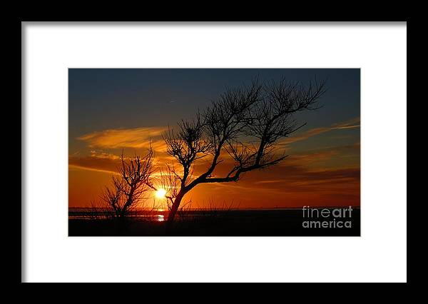 Sunset Framed Print featuring the photograph Sunset Silhouette by Rrrose Pix