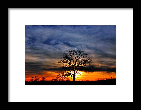 Tree Framed Print featuring the photograph Sunset Tree by Jason Loving