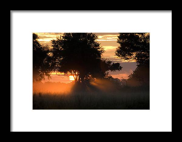 Okavango Delta Framed Print featuring the photograph Sunset With Silhouetted Trees by Roy Toft