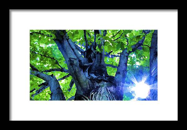 Sunshine Framed Print featuring the photograph Sunshine by John Crothers