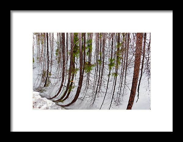 Nature Framed Print featuring the photograph Swamp Reflection by Kenneth Albin