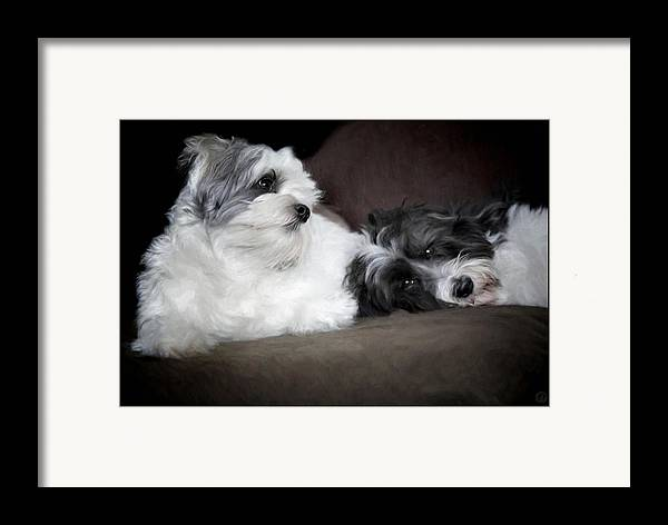 Animal Framed Print featuring the digital art Sweet Couple by Gun Legler