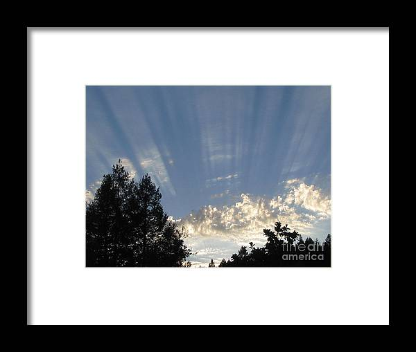 Landscape Framed Print featuring the photograph Symphonic Photography by Tina Marie