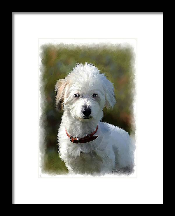White Terrier Dog Framed Print featuring the painting Terrier Dog Portrait by Michael Greenaway