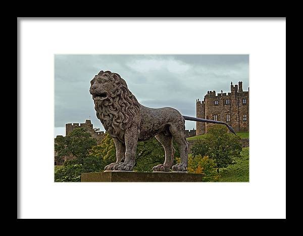 Alnwick Framed Print featuring the photograph The Alnwick Lion by David Pringle