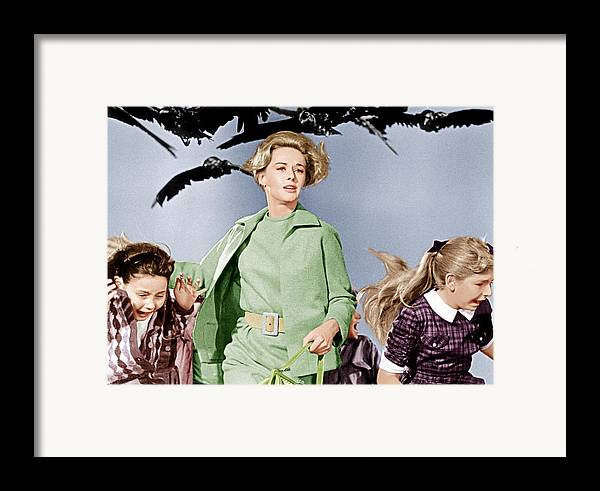 1960s Fashion Framed Print featuring the photograph The Birds, Tippi Hedren Center, 1963 by Everett
