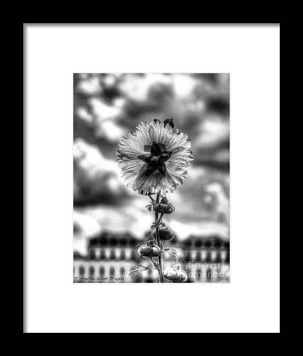 Black And White Framed Print featuring the photograph The Black Star And The Sky by Taylor Steffen SCOTT