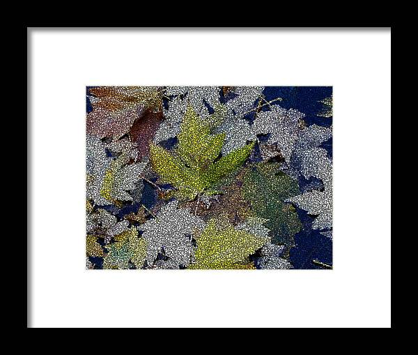 Fall Framed Print featuring the digital art The Color Of Fall by Tim Allen
