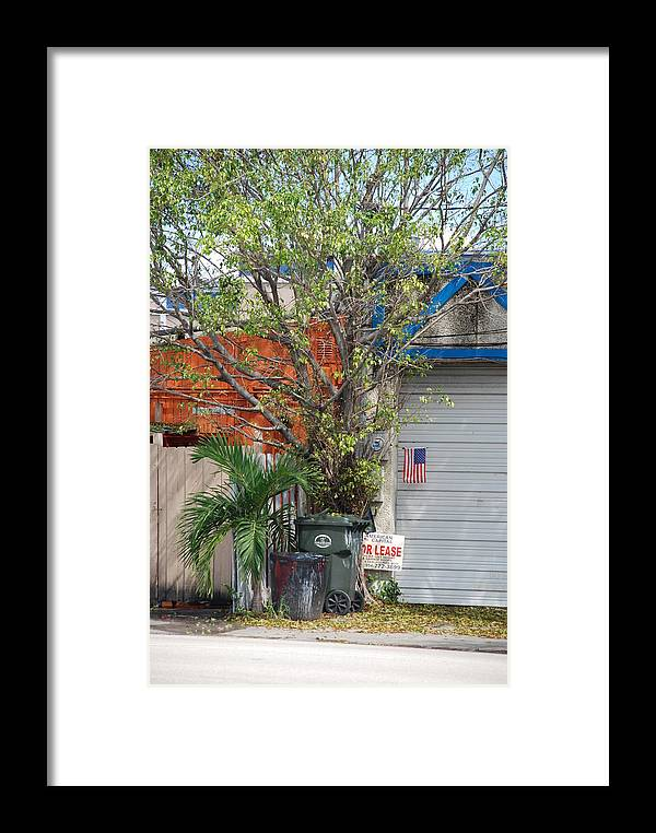 Tree Framed Print featuring the photograph The Corner by Rob Hans