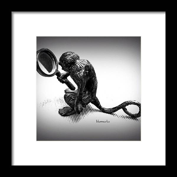 Igsg Framed Print featuring the photograph The Curious by Matthew Blum