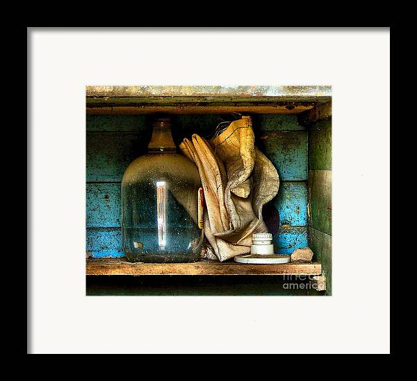 Still Life Framed Print featuring the photograph The Dust Gatherers by Julie Dant