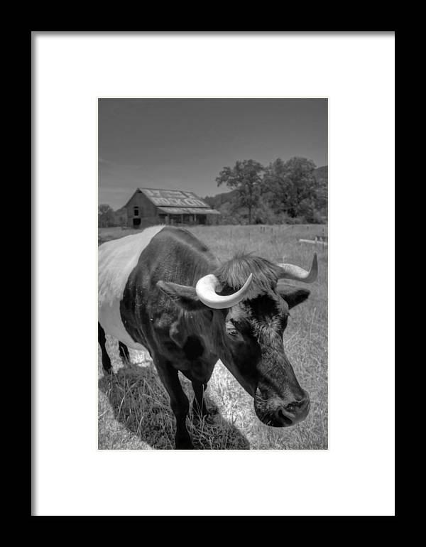 Farm Framed Print featuring the photograph The Farm by David Troxel