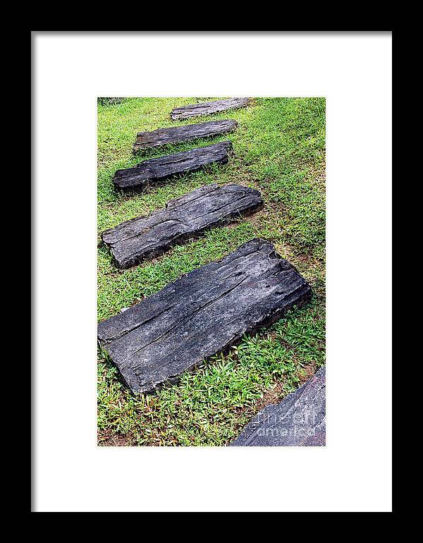 Footpath Framed Print featuring the photograph The Foothpath by Antoni Halim