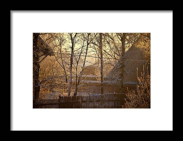 Winter Framed Print featuring the photograph The frosty morning by Nikolay Krusser