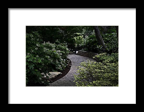 Botanical Garden Framed Print featuring the photograph The Garden Path by Tammye Nash
