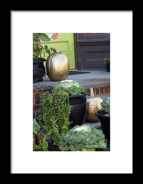 Porch Framed Print featuring the photograph The Golden Pumpkins by Living Color Photography Lorraine Lynch