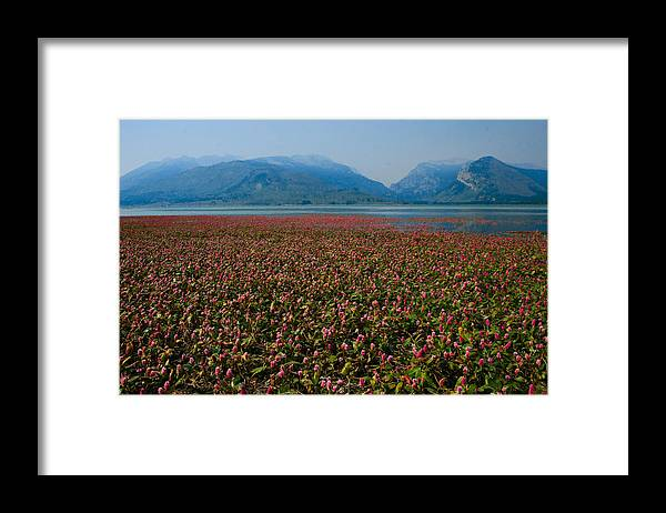 Landscape Framed Print featuring the photograph The Grand Tetons by Jared Couch