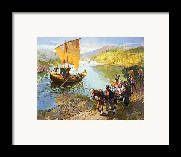 Grapes; Male; Female; Children; Child; Horse And Cart; Ship; Boat; Sail; River; Wine Making; Fruit; Vinivulture; Workers; Creek; Worker Framed Print featuring the painting The Grape-pickers Of Portugal by van der Syde