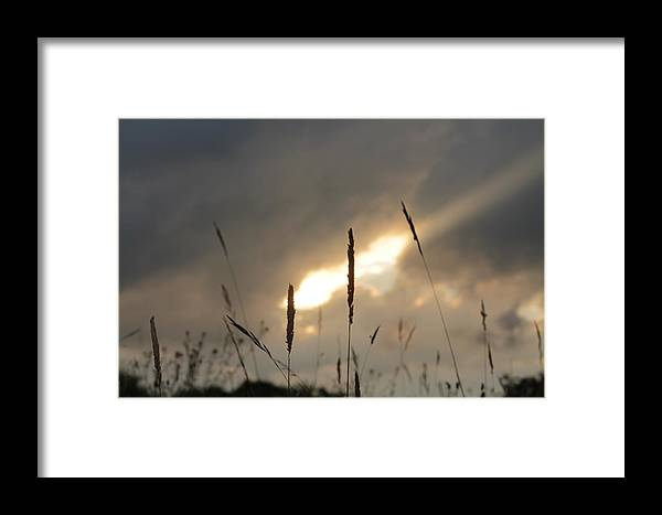 Wheat Grass Sun Rays Strands Sunset Dusk Eve Evening Sky Stormy Grey Cloudy Henry Hemming Framed Print featuring the photograph The Last Light Of Day by Henry Hemming