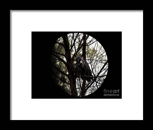 Animal Framed Print featuring the photograph The Night Owl And Harvest Moon 2 by Wingsdomain Art and Photography