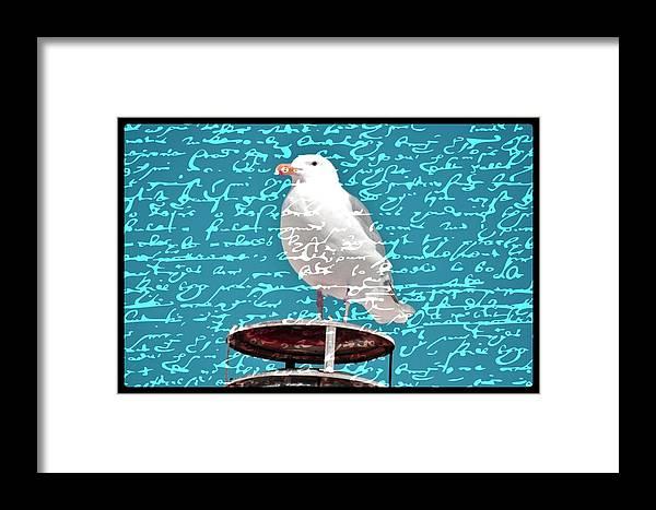 Seagulls Framed Print featuring the photograph The Onlooker by Debra Miller