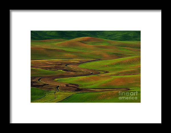 Beve Brown-clark Framed Print featuring the photograph The Palouse by Beve Brown-Clark Photography