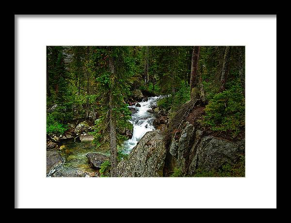 Forest Framed Print featuring the photograph The River Below Hidden Falls by Don Saxon