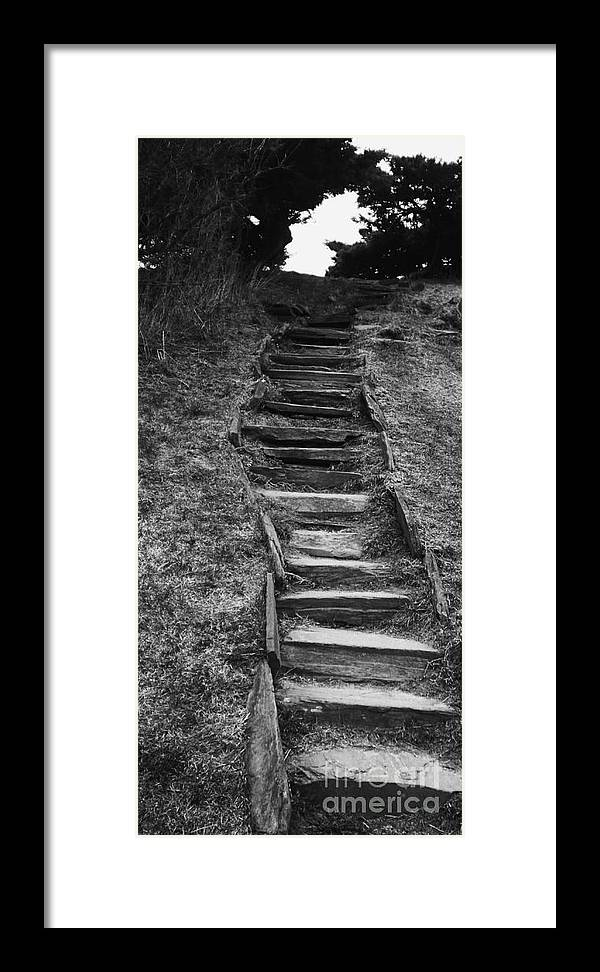 Staircase Framed Print featuring the photograph The Stone Staircase by Christy Beal