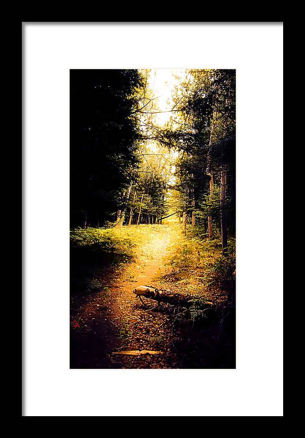 Trail Framed Print featuring the painting The Trail by Adam Vance