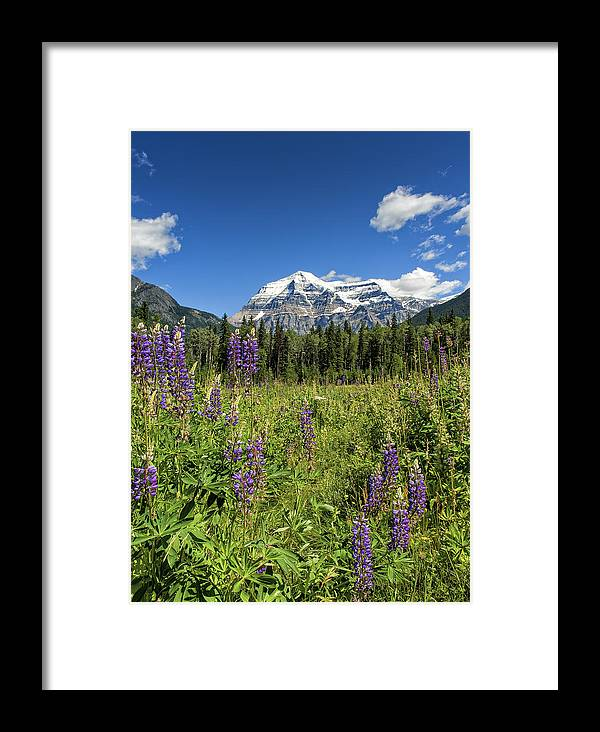 Canada Framed Print featuring the photograph This Is British Columbia No.70 - Summer At Mount Robson by Paul W Sharpe Aka Wizard of Wonders