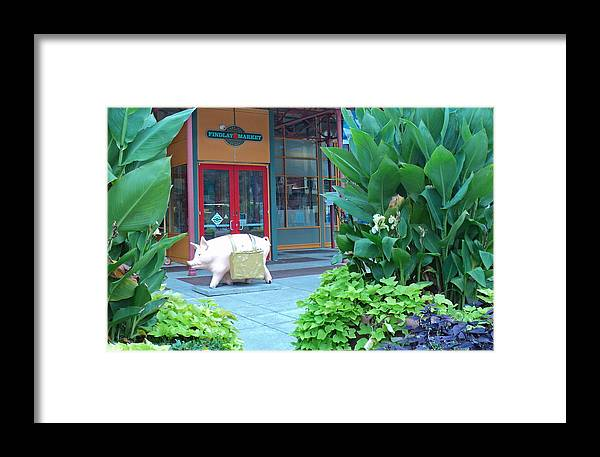 Market Framed Print featuring the photograph This Little Piggy Went To The Market by Jennifer Kelly