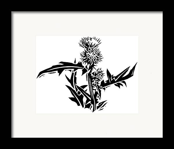 Thistle Framed Print featuring the photograph Thistle, Lino Print by Gary Hincks