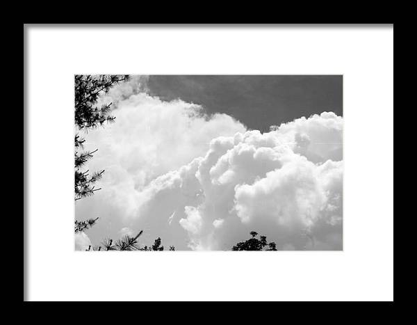 Framed Print featuring the photograph Thor by Barbara S Nickerson