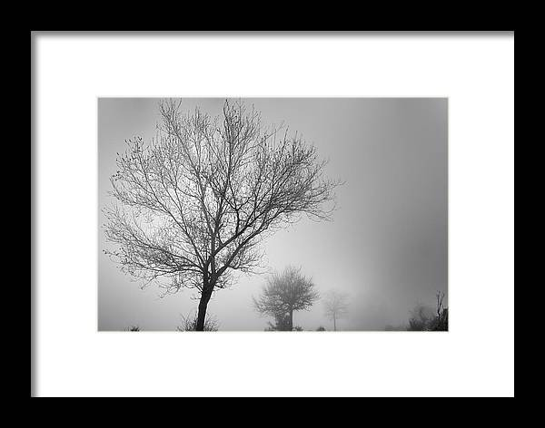Black And White Framed Print featuring the photograph Three Silhouettes In The Rain by Guido Montanes Castillo