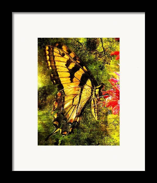 J Larry Walker Framed Print featuring the digital art Tiger Swallowtail Butterfly Happily Feeds by J Larry Walker