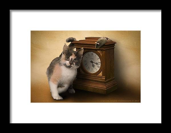 Cat Framed Print featuring the photograph Time For Cat And Mouse by Kelvin Andow