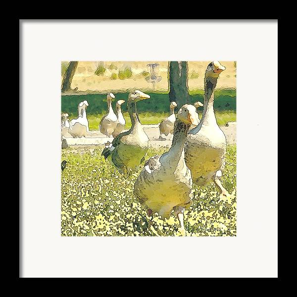 Goose Framed Print featuring the painting Time To Get Moving by Artist and Photographer Laura Wrede