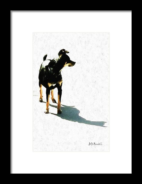 Pet Framed Print featuring the painting 'tiny' by Brian D Meredith