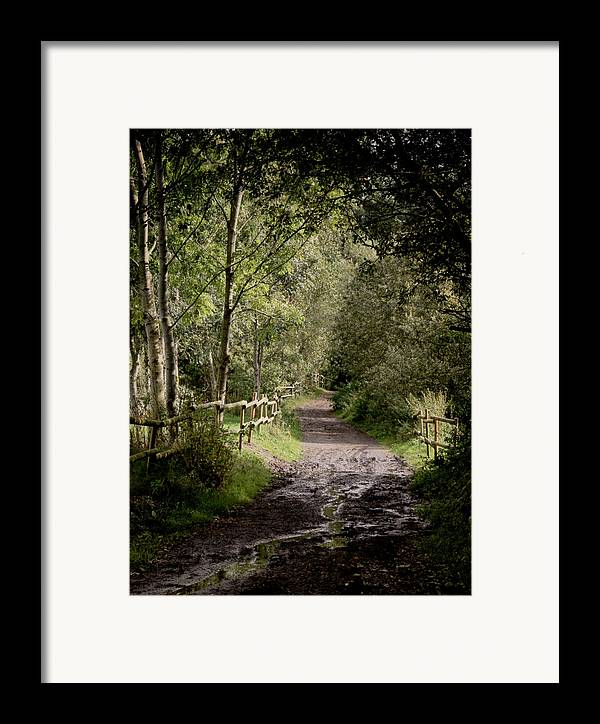 Lane Framed Print featuring the photograph To The End Of September by Odd Jeppesen