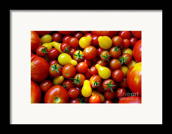 Abundance Framed Print featuring the photograph Tomatoes Background by Carlos Caetano