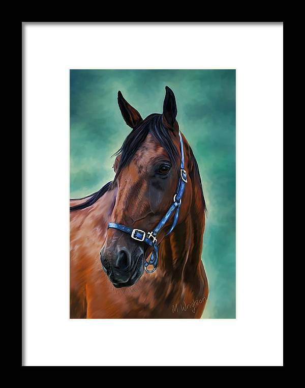 Horse Framed Print featuring the painting Tommy - Horse Painting by Michelle Wrighton