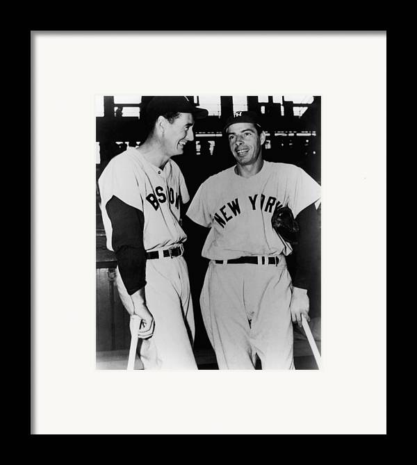 1950s Candids Framed Print featuring the photograph Top Sluggers. Ted Williams by Everett