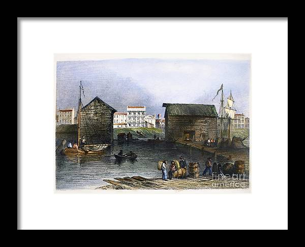 1842 Framed Print featuring the photograph Toronto, Canada, C1842 by Granger